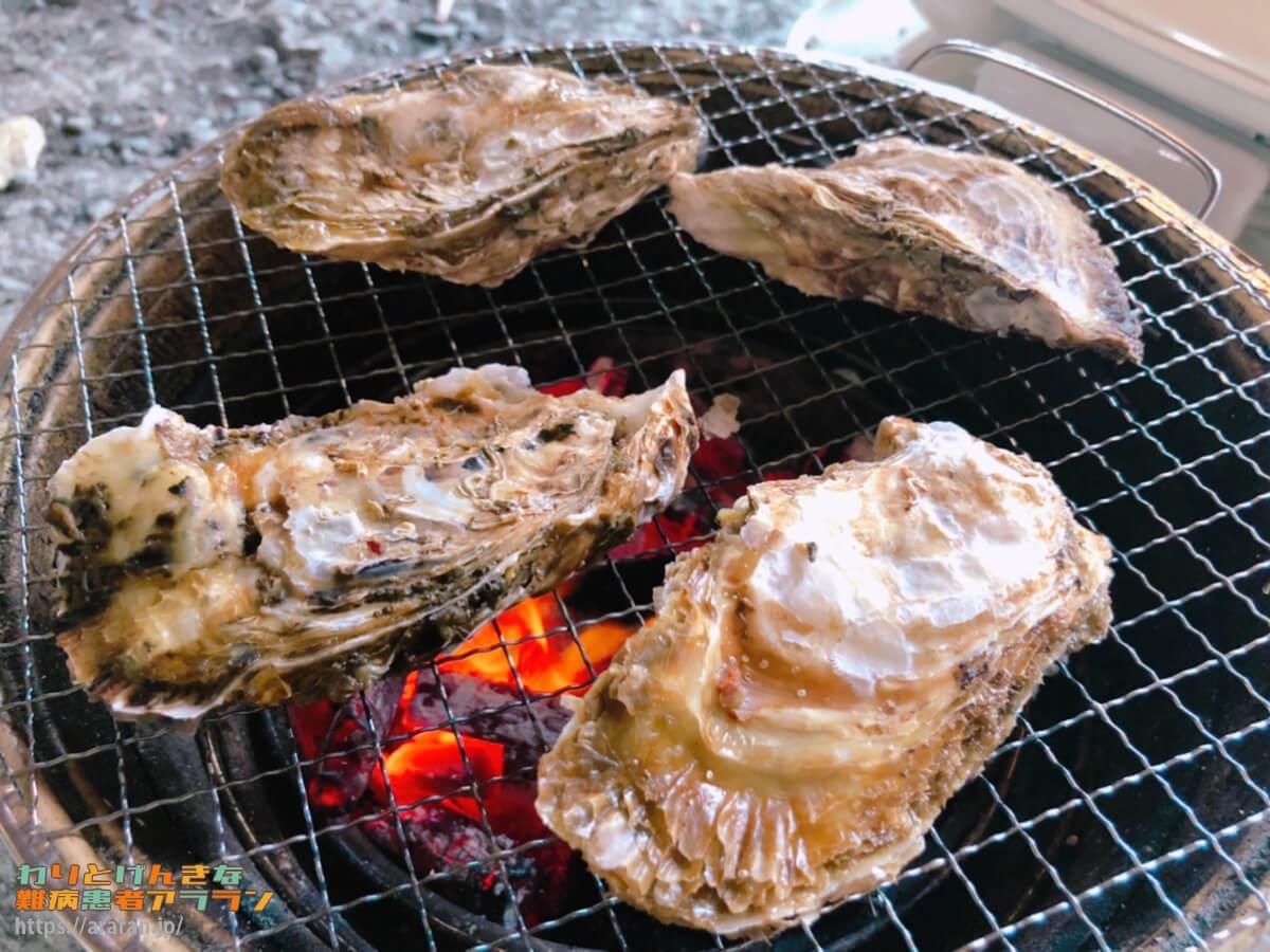 素泊まりプランで持ち込んだ食材(牡蠣)