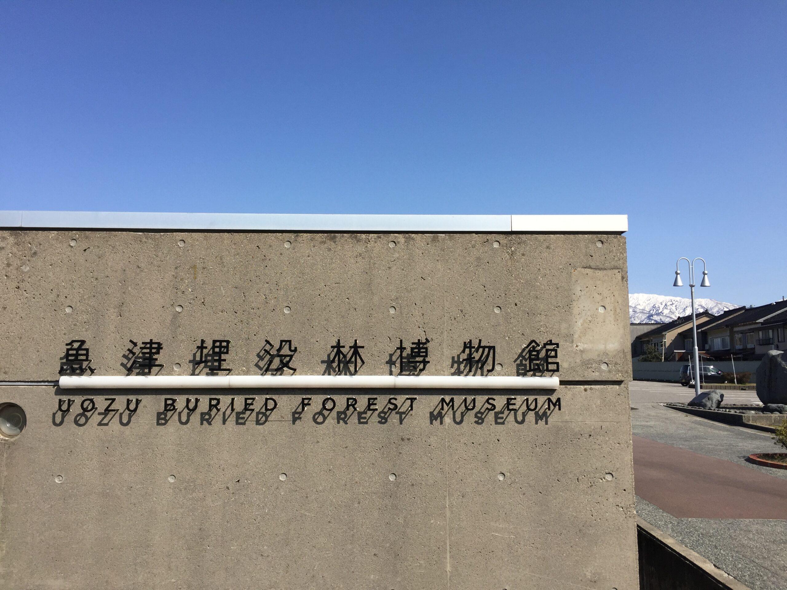 埋没林博物館の外観
